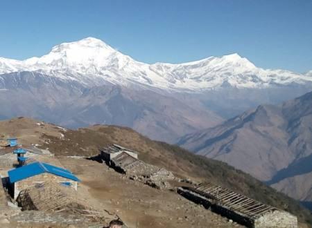 Khopra Danda Slope Trekking